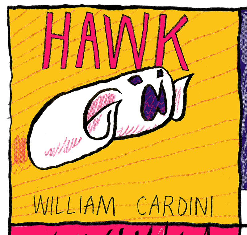 Hawk by William Cardini preview panel